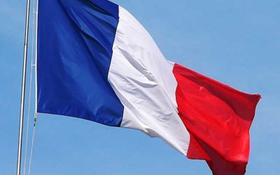 French Conseil Constitutionnel launches online review with comparative constitutional law content