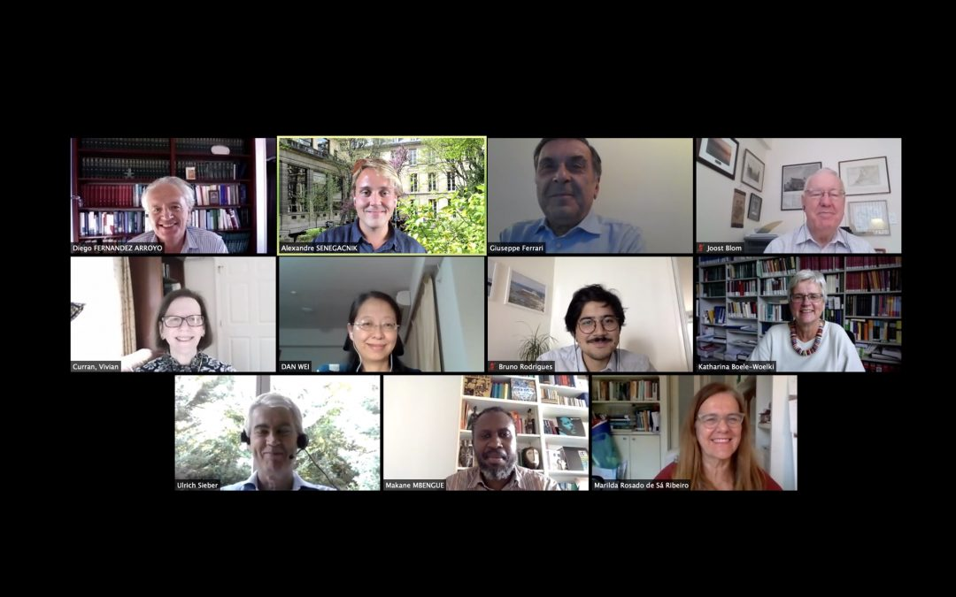 Online Meeting of the Executive Committee and Secretariat